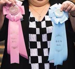 Skal din baby/hvalp også have muligheden for at vinde en roset på en udstillinge, arrangeret af Cavalierklubben?